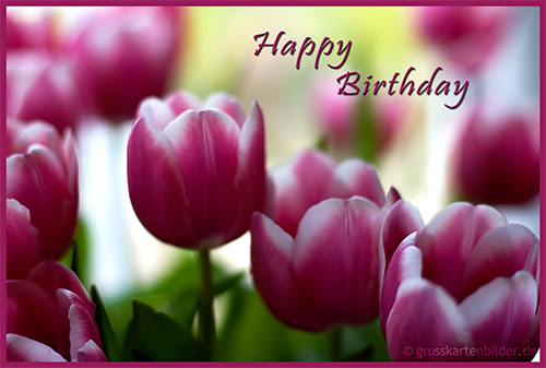Animated Birthday Cards Free Download gangcraftnet – Animated Birthday Greeting Cards