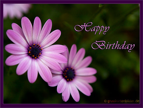 Animated Birthday Cards Free Download Free wallpaper download – Download Birthday Greeting