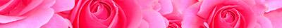 Rosen von 123gif.de