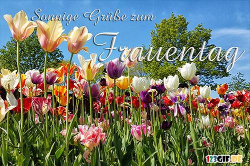 frauentag-0023.jpg von 123gif.de Download & Grußkartenversand