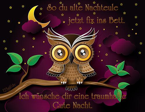 gute-nacht-0005.jpg von 123gif.de Download & Grußkartenversand