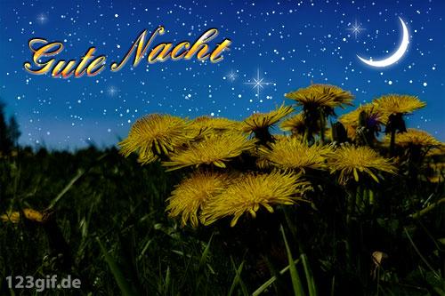 gute-nacht-0010.jpg von 123gif.de Download & Grußkartenversand