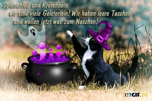 katzen-0069.jpg von 123gif.de Download & Grußkartenversand