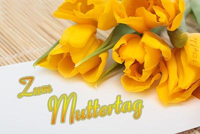 Tulpen von 123gif.de