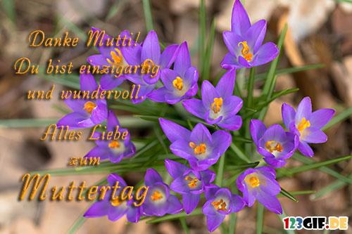 muttertag-0127.jpg von 123gif.de Download & Grußkartenversand