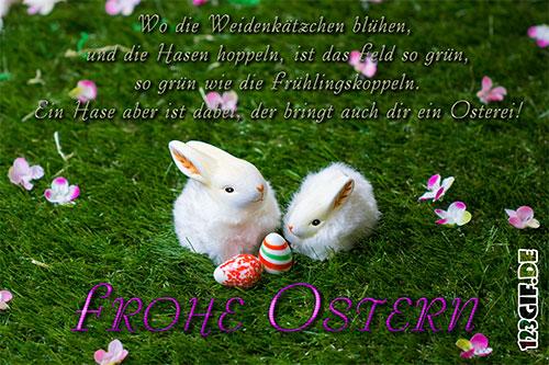osterhasen-0246.jpg von 123gif.de Download & Grußkartenversand