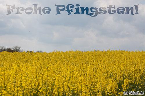pfingsten-0001.jpg von 123gif.de Download & Grußkartenversand