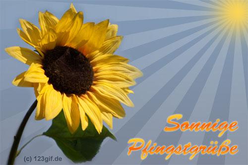 pfingsten-0002.jpg von 123gif.de Download & Grußkartenversand