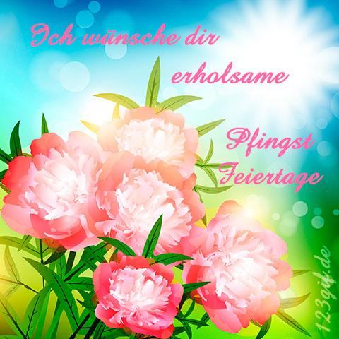Rosafarbene von 123gif.de