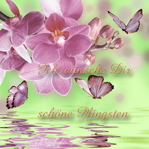 pfingsten-0014.jpg von 123gif.de Download & Grußkartenversand