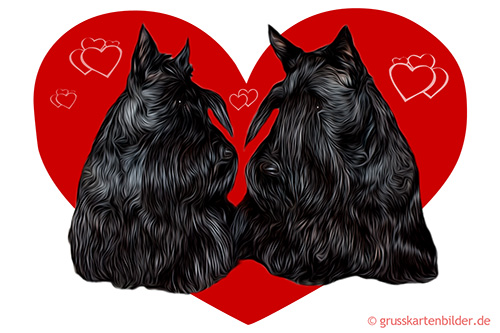 scottish-terrier-0001.jpg von 123gif.de Download & Grußkartenversand