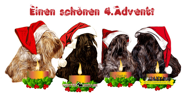 scottish-terrier-0006.jpg von 123gif.de Download & Grußkartenversand