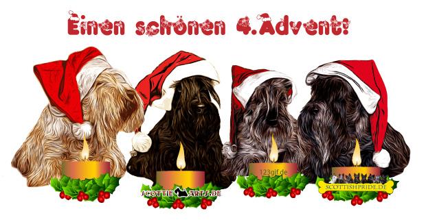scottish-terrier-0006.jpg von 123gif.de Download & Grußkartenversand