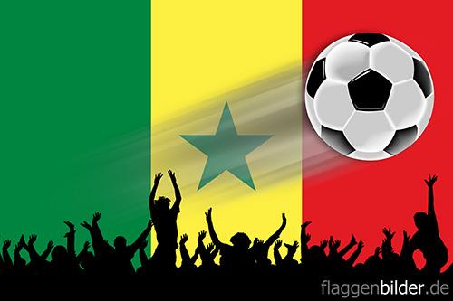 Senegal Fussball Fans